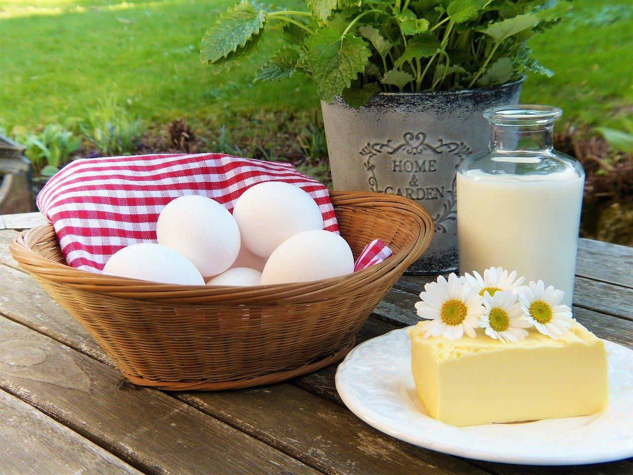 kalcij v jajcih, mleku in siru