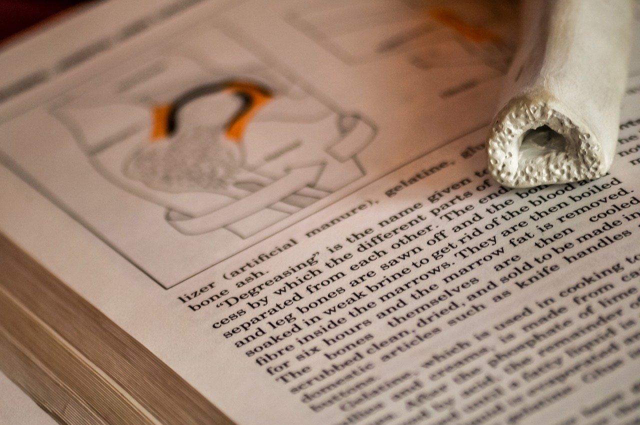 enciklopedija in izobraževanje o kosteh