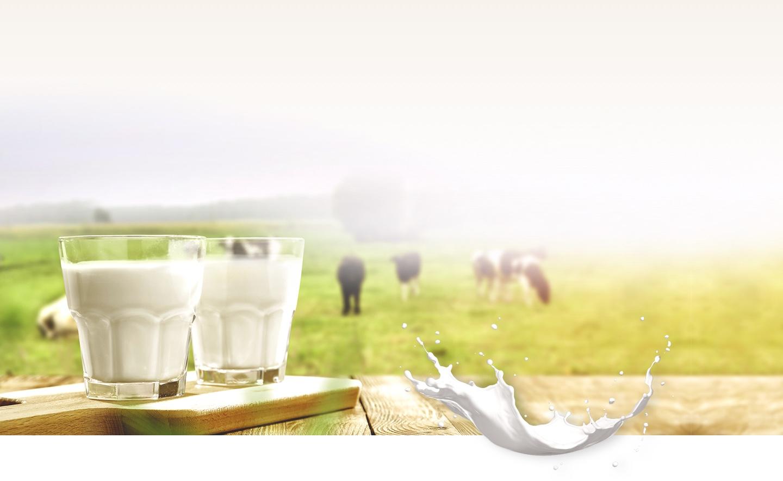 mlekarna-krepko-popust-za-kefir-clani